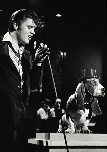 Elvis with DM 3